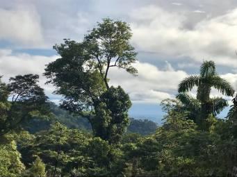 Parque Nacional Madidi Comunidad Uchupiamona2