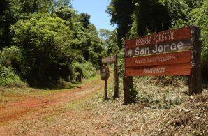 ReservaSanJorge2