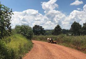 Area rural de Yaboti