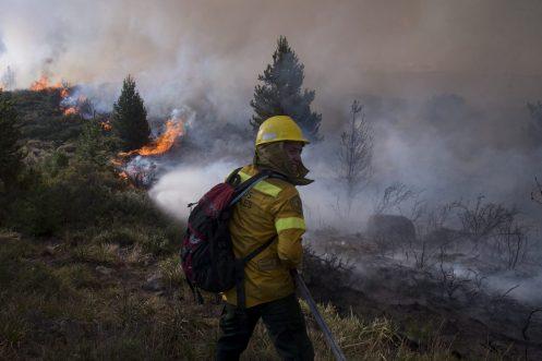 Incendi Foresta Circunvalacion