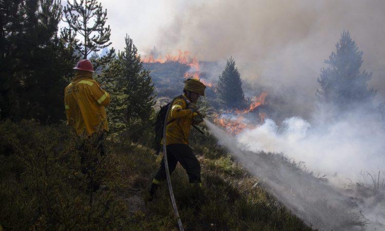 Patagonia: un incendio forestal en Bariloche arrasa varias ...