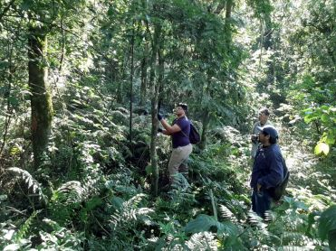 BiodiversidadyForestacion11