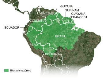 mapa-paises-amazonicos-nc