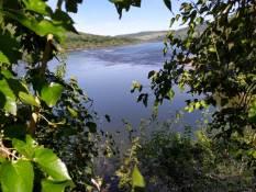 Rio Uruguay Reserva Biosfera Yaboti