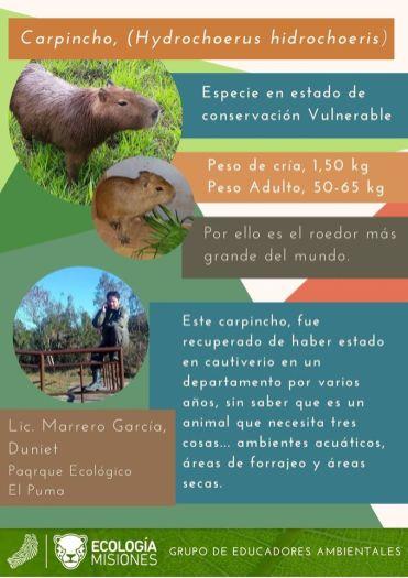 Educación Ambiental Ecologia (Misiones) 6