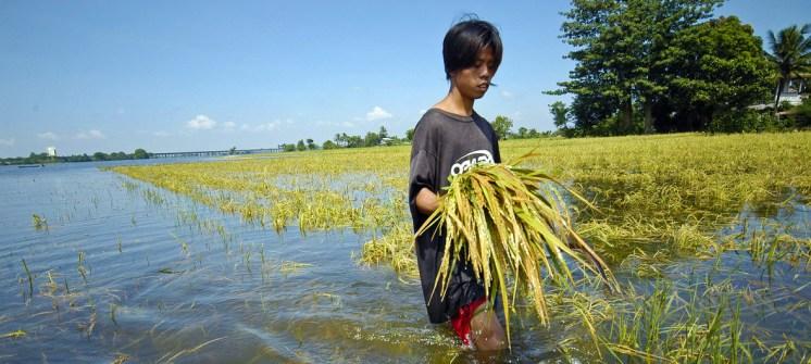 ONU Cambio Climatico y COVID. Foto Banco Mundial Nonie Reyes Edit