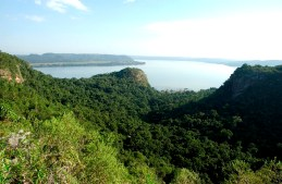 PPTeyuCuare (Foto ArgentinaForestal)