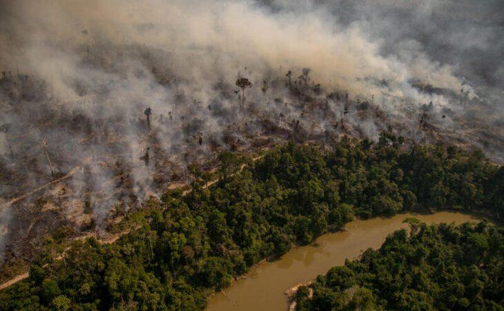 América del Sur: Los incendios en el Pantanal de Brasil son los peores en 15 años por la prolongada sequía en la región - Argentina Forestal