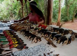 Mujer-Mbya-Guarani-Misiones-3
