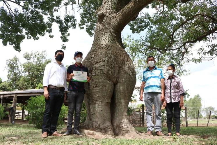 6 árbol de la gente 3