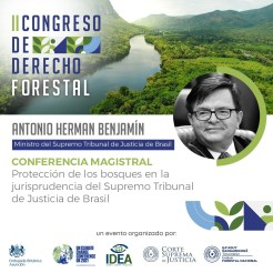 Derecho Forestal IDEA Paraguay