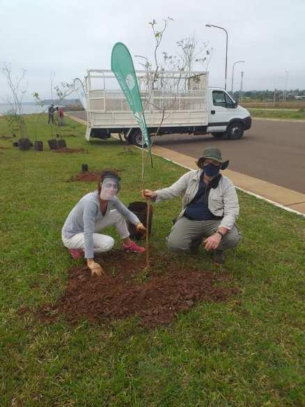 Huella Verde Plantacion de Arboles
