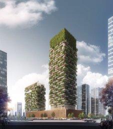 UrbanoForest 1