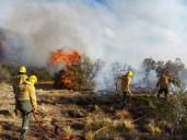 Incendio Forestal en El Maiten 2