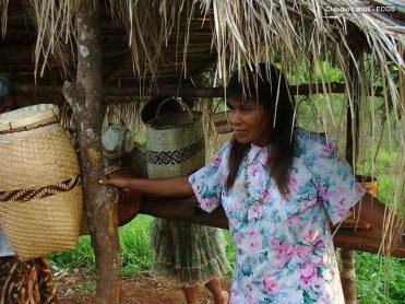 Desarrollo Local Comunidades Indigenas