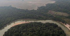 Brasil Mercedes Bustamante Deforestacion