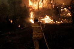 Imágenes de los incendios en Eubea Grecia (agosto 2021) 13