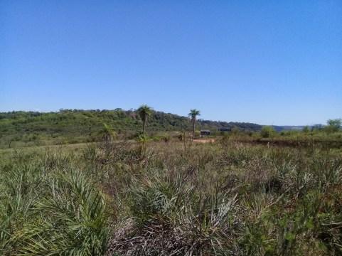 Evento UICN 2021 en Misiones (paisaje1)
