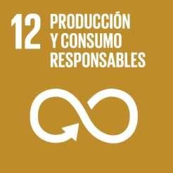 ODS12-PRODUCCION-Y-CONSUMO-RESPONSABLE (1)