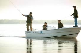 Golden Dorado fishing