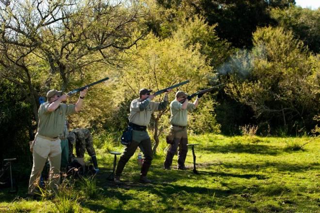 Hunting doves