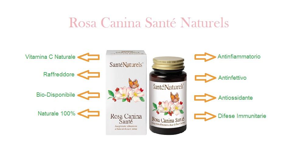 La Rosa Canina ha proprietà immunostimolanti e antinfiammatorie adatta in caso di raffreddore. É la migliore fonte di vitamina C naturale bio-disponibile