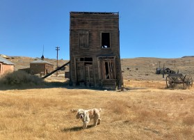 Bodie Ghost Town, Mono County, CA @ArgosyOdyssey/CateBattles