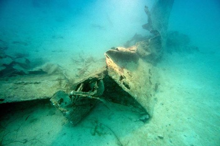 The World War II Helldiver, missing for over 70 years, was discovered in the waters of Palau.