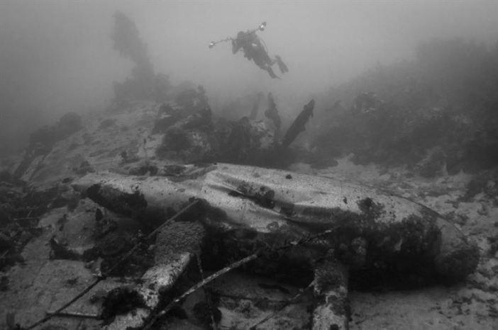 Airplane Wrecks of Truk Lagoon: Emily Plane (Credits: Brandi Mueller)