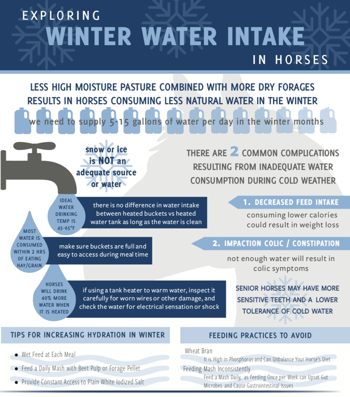 Get Your Horse to Drink More Water During Winter Chart