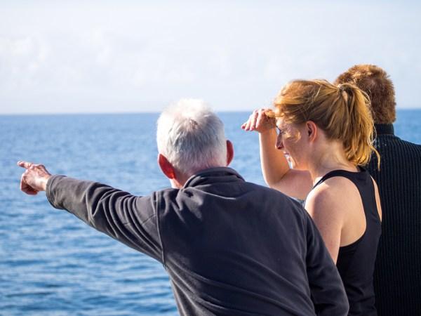 Wildlife Cruises   Responsible Wildlife Cruise   Wildlife Spotting   Scotland   Argyll   Islands  Hebrides