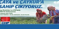 Rize CHP Çayın Duayenlerini Toparlıyor
