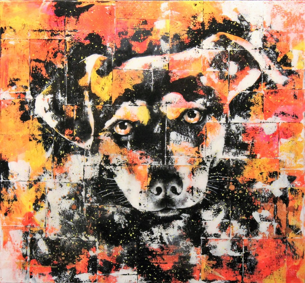 Portrait de Mootae le chien