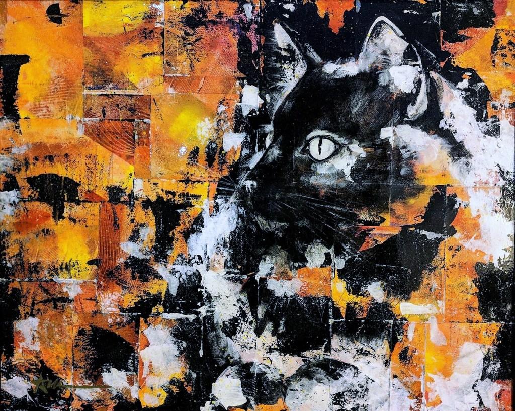 Portrait de Kétamine le chat