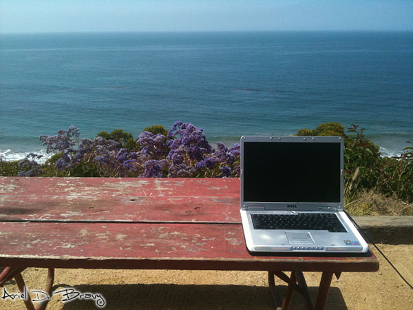Working on the laptop by the ocean