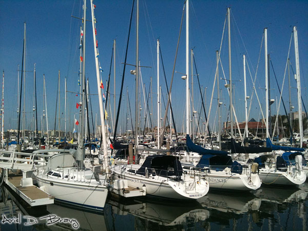 Closer to the sailboats in the marina