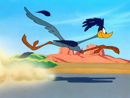 Cartoon Road Runner