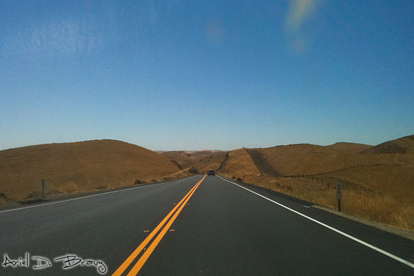 Driving through rolling yellow hills