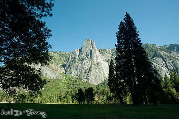 Meadow and rock faces