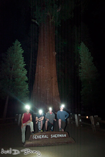 The four of us at General Sherman at night