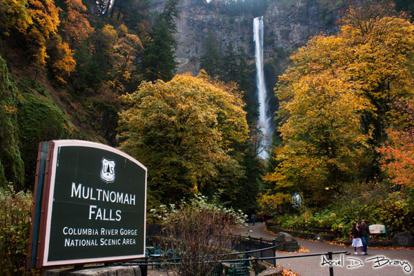 Multnomah Falls from the handy dandy entrance sign