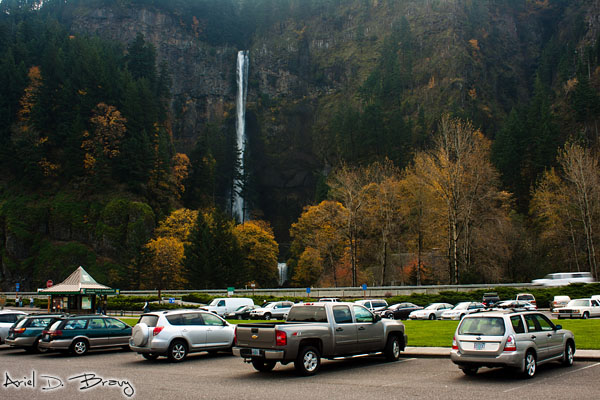 Multnomah Falls from the parking lot across the highway