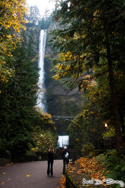 Oh... Multnomah Falls is actually in two sections