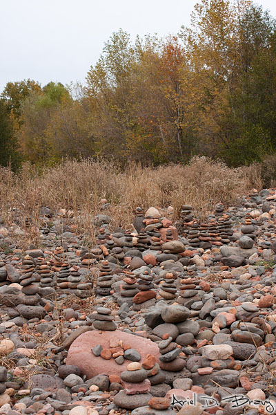 Stacks and stacks and stacks of rocks