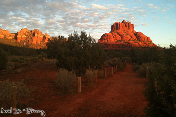 Bell Rock at sunrise