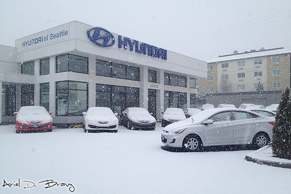 Snow falling more heavily at the dealership on Tuesday