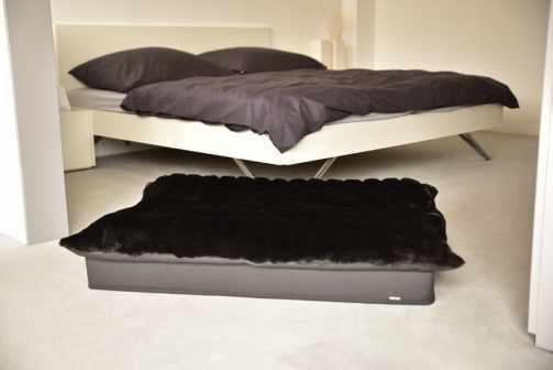 Dogspring Bed Blackdream