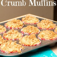 Skinnified Sunday: Apple Cinnamon Crumb Muffins
