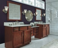 Birch Cabinets in Casual Bathroom