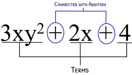 multiplication of polynomials area model